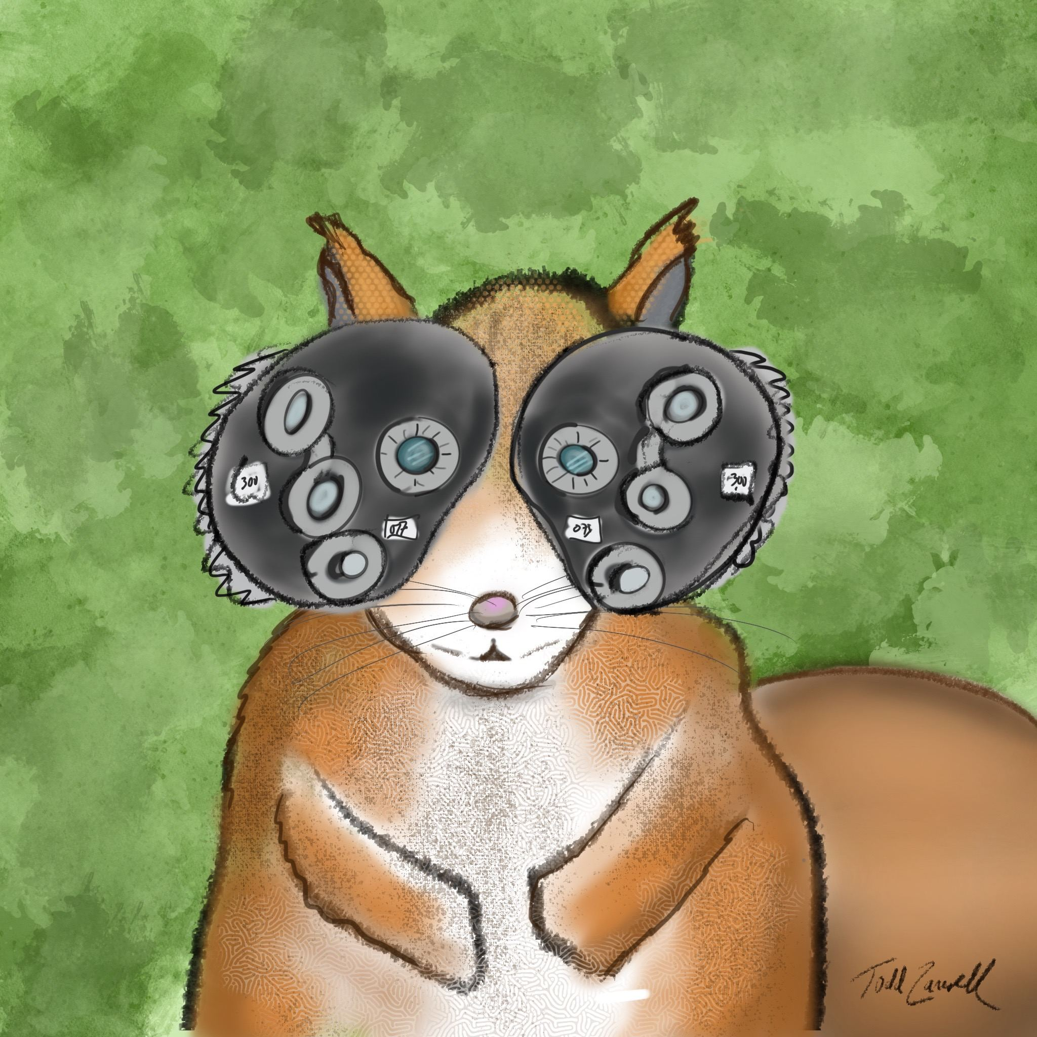Squirrel eye exam